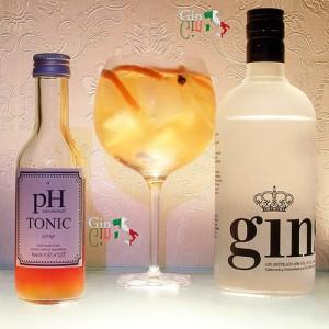 Ginself Gin