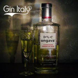 Ungava Gin