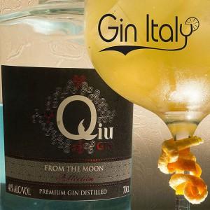 Qiu Gin