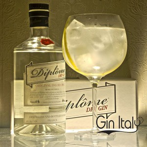 Diplome Gin Tonic