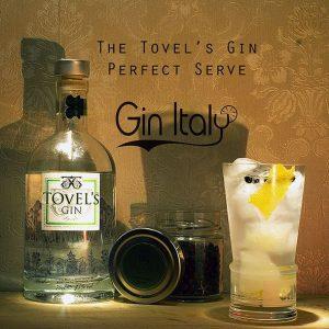 Tovels Gin Perfect Serve