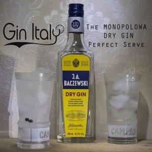 Monopolowa Gin Perfect Serve