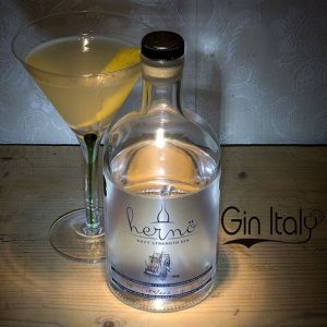Hernö Navy Strength Gin Martini Cocktail
