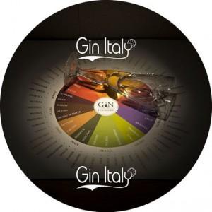 Degustare un Gin