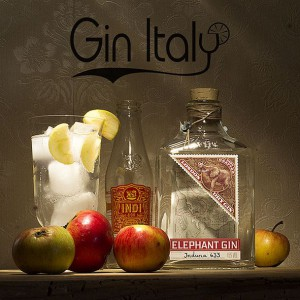 Elephant Gin GinTonico