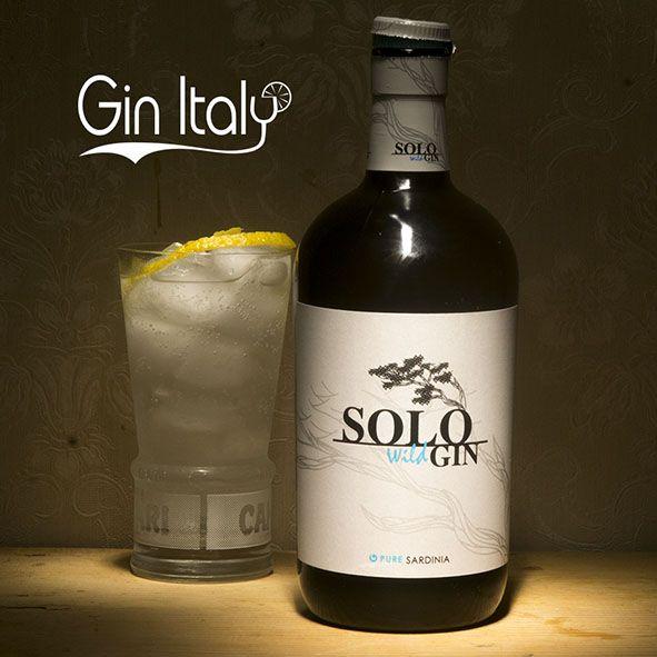 Solo Wild Gin Gintonico
