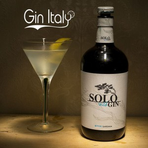 Solo Wild Gin Martini