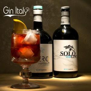 Solo Wild Gin Negroni