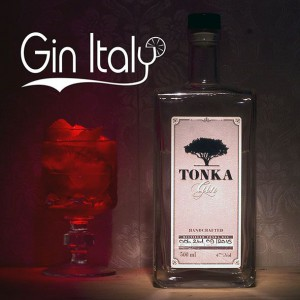 Tonka Gin Negroni