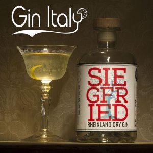 Siegfried Gin Martini