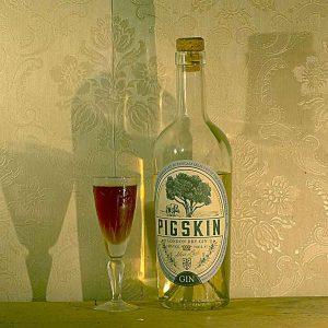 PigSkin Gin Martinez