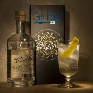 Batch-Gin-GinTonic