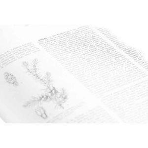 ginclopedia-s