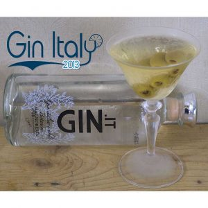 Ginpuntoit-gin-punto-it-Martini