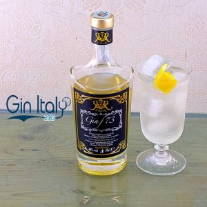 Gin F73 Tonic Zafferano