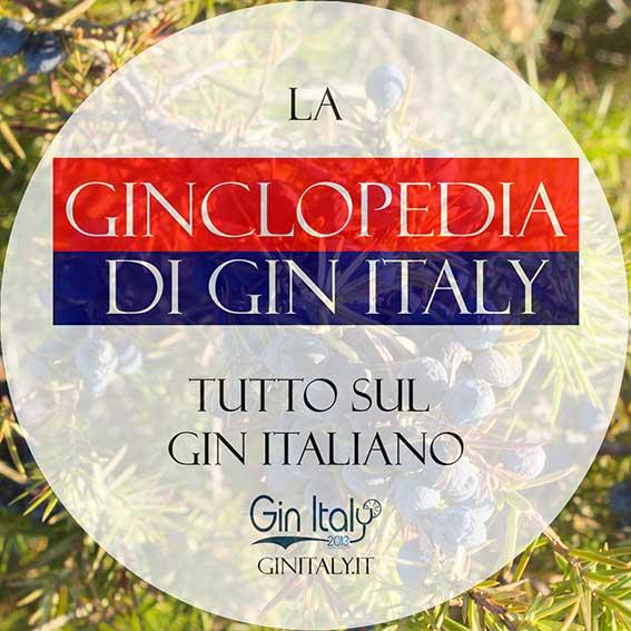 La-Ginclopedia-di-Gin-Italy--Presentazione