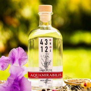 43-12-Aquamirabilis