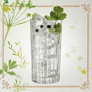 Tanqueray-Lovage-Gin-&-Tonic