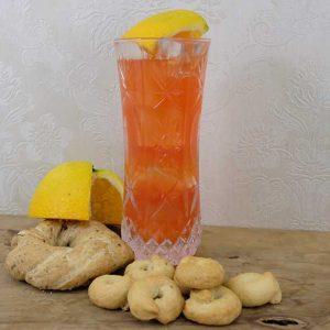 Gin-Garibaldi