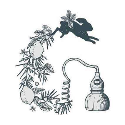 logo-Gin-Italy